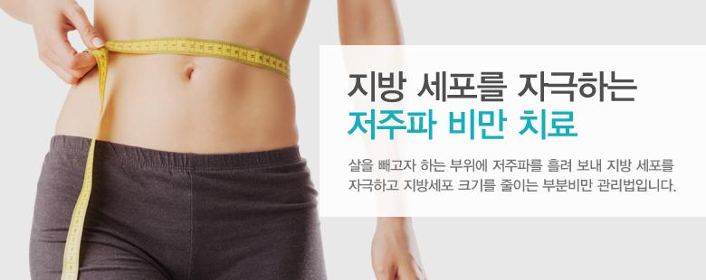 지방 세포를 자극하 저주파 비만 치료
