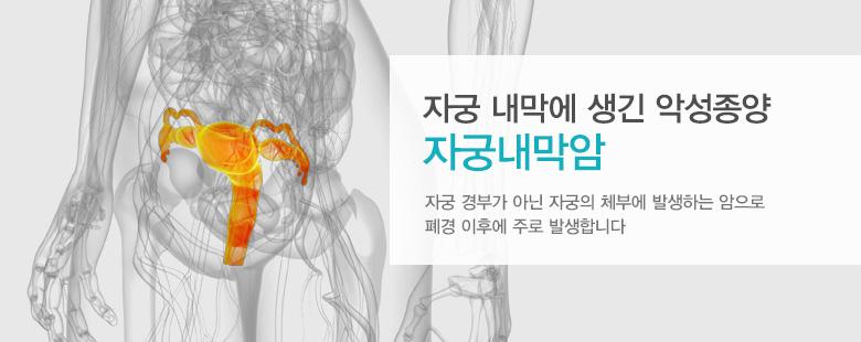 자궁 내막에 생긴 악성종양 자궁내막암