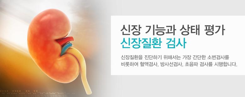 신장 기능과 상태 평가 신장질환 검사