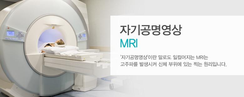 자기공명영상 MRI