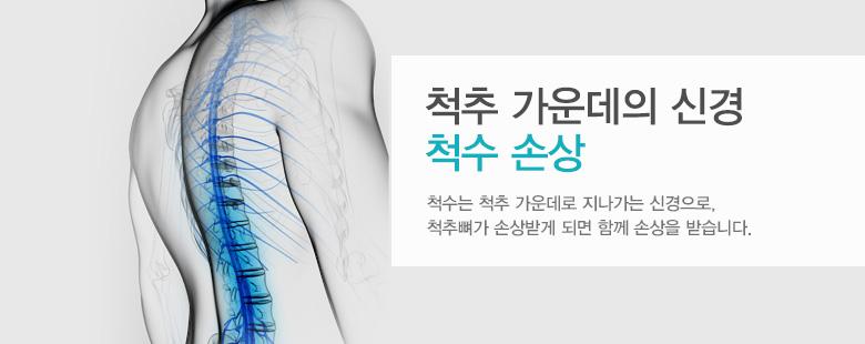 척추 가운데의 신경 척수 손상