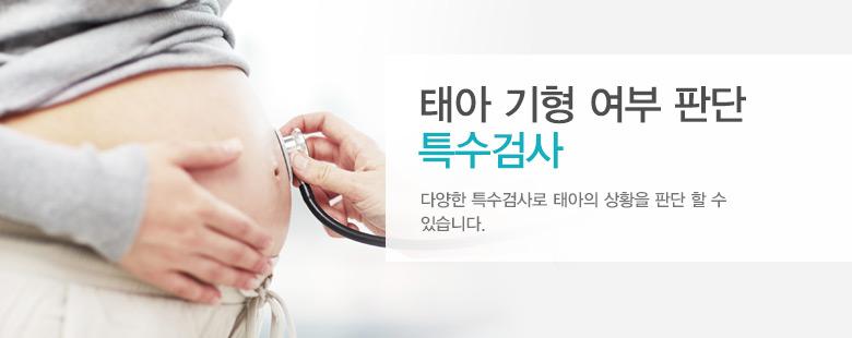 태아 기형 여부 판단 특수검사